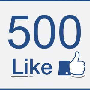 500 Facebook Page Likes