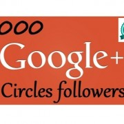 1000 Google Plus Followers